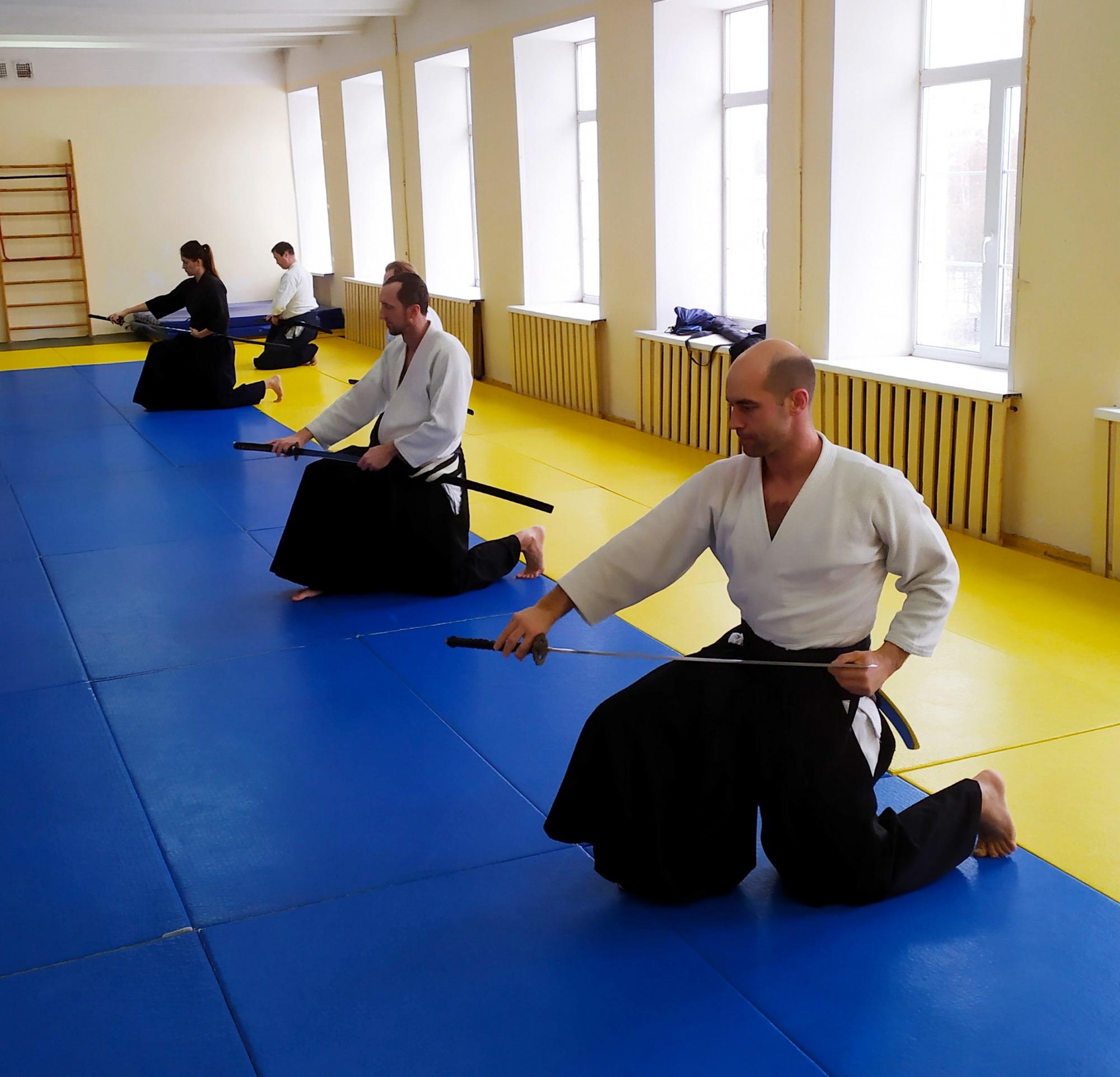 плановый методический семинар по Айкидо Айкикай, Мусо Синден рю Иайдо (FEI) и Синто Мусо рю Дзёдо (FEJ).